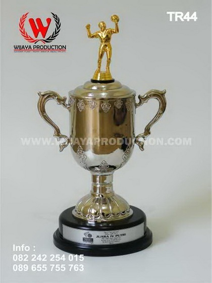 Trophy Piala Voli | Kejuaraan Voli