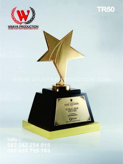 Trophy Bentuk Bintang