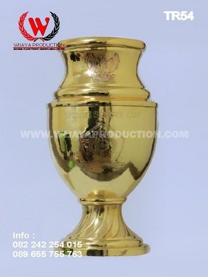 Piala Bupati Sorsel Cup